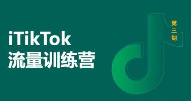 【TikTok】TikTok流量增长训练营:基础操作+涨粉+运营+导流闭环